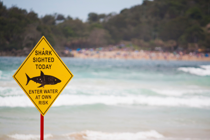 ThinkstockPhotos-167167343 Westpac Little Ripper Lifesaver UAVs to Patrol for Sharks, Support SAR