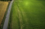 Farmland from above - aerial image of a lush green filed