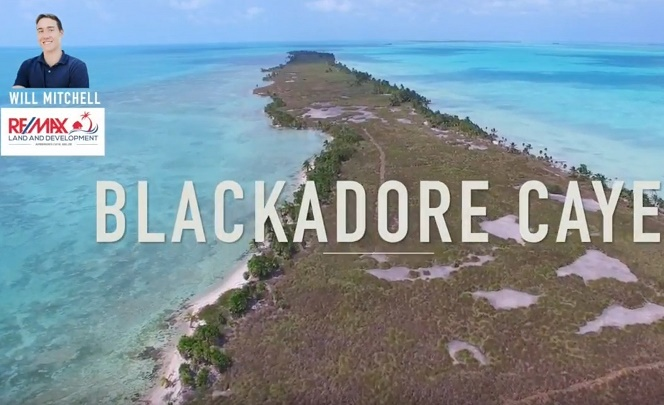 361477 Drone Captures Footage of Leo DiCaprio's Two-Mile Island in Belize