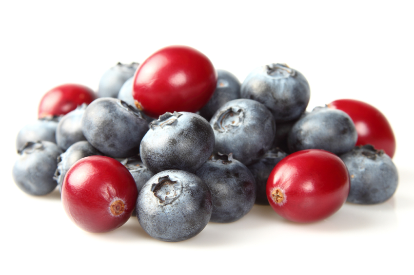 iStock_000019115612_Small N.J. College Deploys UAS for Blueberry and Cranberry Crop Research