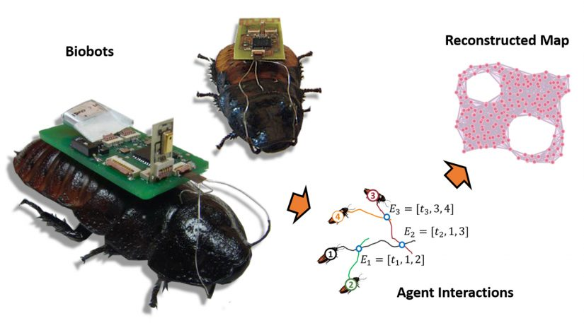 Lobaton-Biobot-Mapping-HEADER-825x464 UAVs and Insects? Researchers Explore Potential for Big Mapping Projects