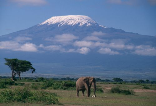 1079_thinkstockphotos-78722282 Quadcopter Goes up 20K Feet to Top of Kilimanjaro