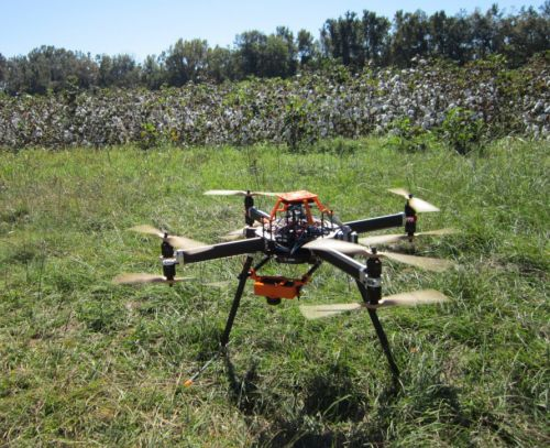 810_clemson_majas-uav-with-cotton Clemson Researcher Gets FAA Approval to Fly UAV for Precision Ag