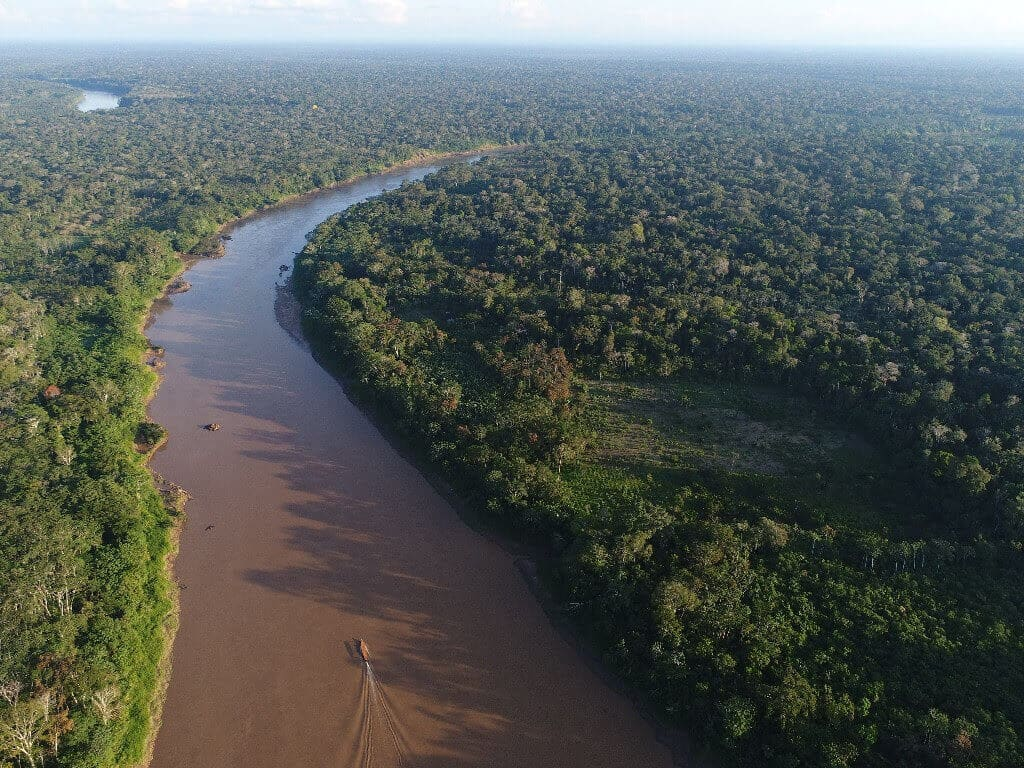 river Mapping the Forests of the Future: Drones Aid With Amazon Restoration